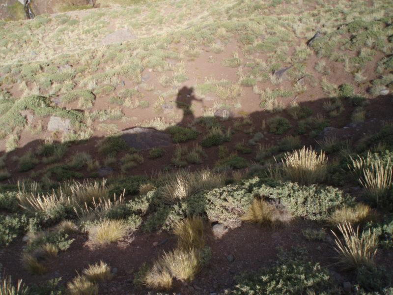 オルコーネス谷をトレッキング