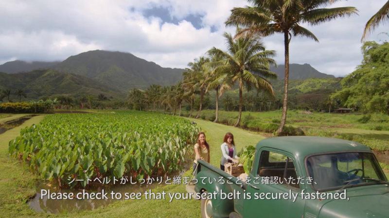 ハワイアン航空の機内安全ビデオイメージ15
