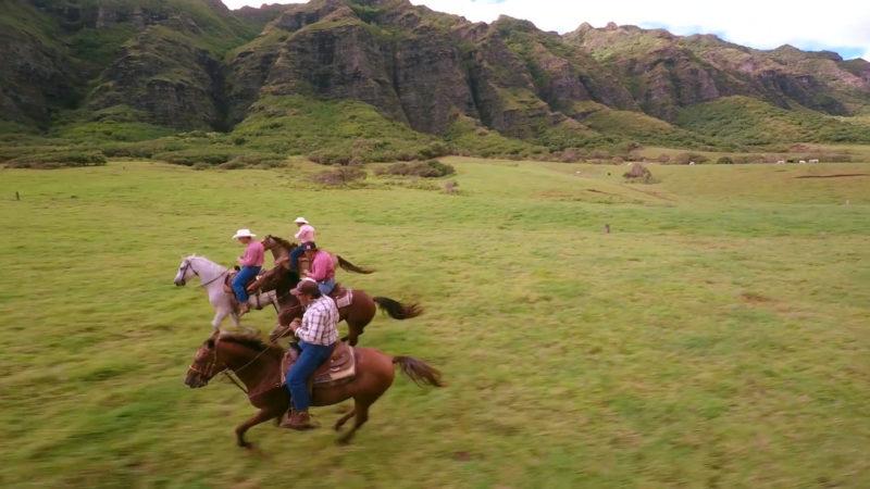 ハワイアン航空の機内安全ビデオイメージ14
